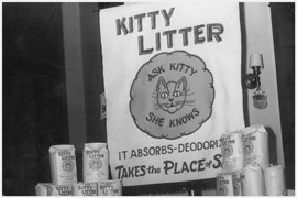 kitty-litter-display